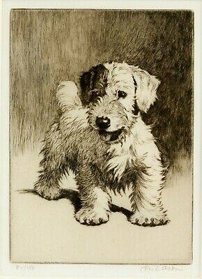 £7.95 • Buy Framed Print - Cecil Aldin Terrier Etching Signed Limited Edition (Picture Art)