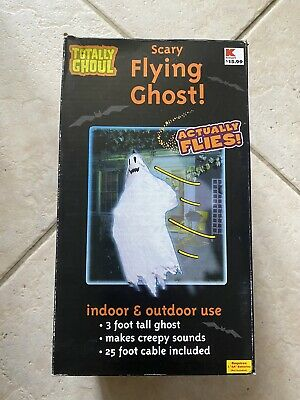 $ CDN35.25 • Buy Halloween Tekky Toys Scary Flying Ghost Flies FOR PARTS Or Decorative ONLY