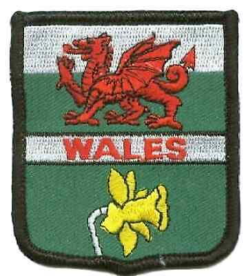Wales Dragon & Daffodil World Embroidered Patch Badge • 4£