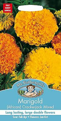 Mr Fothergills - Flower - African Marigold Crackerjack Mixed - 120 Seeds • 2.15£
