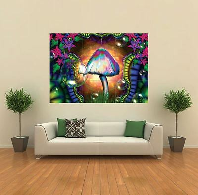 £14.99 • Buy Magic Mushrooms Trippy New Giant Poster Wall Art Print Picture G158