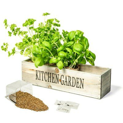 Kitchen Herb Garden Planter Gift Kits Sets Indoor Mixed Seeds Large Packs • 10.99£