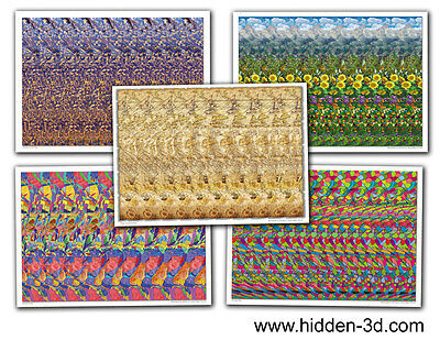 AU23.58 • Buy Lot Of 5 Stereogram Posters 18 X13  Hidden 3D Illusion