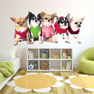 Chihuahua Puppy Dogs Wall Sticker WS-43107 • 15.99£