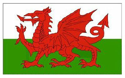 £7.88 • Buy Special Offer....5ft X 3ft Wales Welsh Dragon National Flag