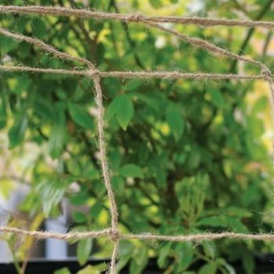 £7.99 • Buy Jute Netting Gardening Outdoor Thick Durable Peas Beans Climbing Plants Support