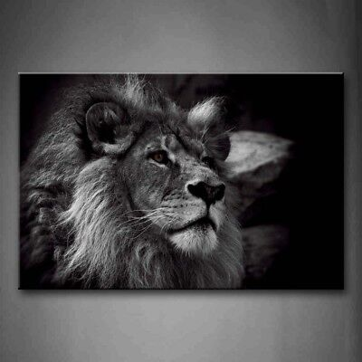 $43.99 • Buy Framed Black And White Lion Head Portrait Canvas Print Wall Art Painting Picture