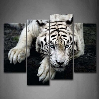 $47.49 • Buy Framed Black And White Tiger Canvas Print Wall Art Painting Wild Animal Picture