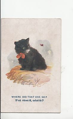 B80546 Where Did That One Go Chaising A Butterfly  Paint Cat  Front/back Image • 5.40£