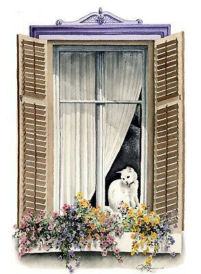 WHITE CAT AT WINDOW Watercolor 8 X 10 ART Print By Artist DJ Rogers W/COA • 15£