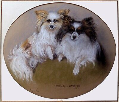 £174.95 • Buy PAPILLON FRENCH DOG ORIGINAL PASTEL PAINTING By Marjorie Cox - Ready Mounted