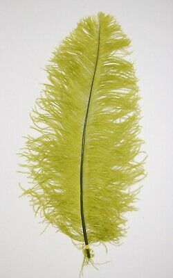 $14.99 • Buy 2 PCs OSTRICH PLUMES 8 -18  FEATHERS COLOR : MOSS For Hats/Bridal