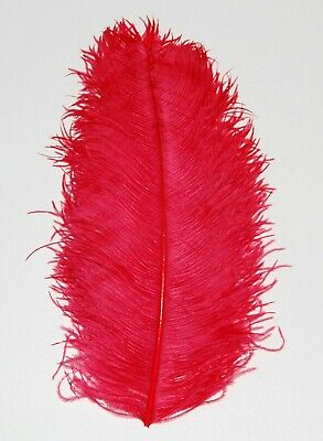$14.99 • Buy 1 RED Ostrich FEATHER 23-28  Full Wing PLUMES; Bridal/Wedding/Centerpiece