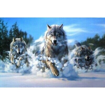 AU15.99 • Buy 5D Wolf Animals Diamond Painting Kits Full Drill Art Embroidery Decors DIY Gifts