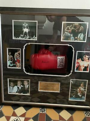 AU1000 • Buy Muhammad Ali Hand Signed Framed  Boxing Glove