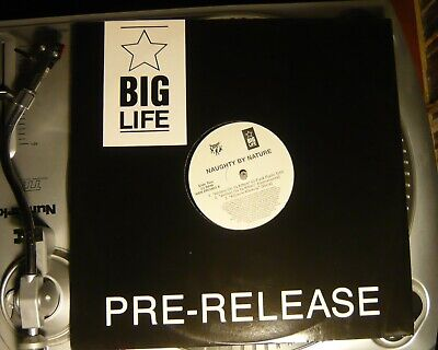 NAUGHTY BY NATURE  Hip Hop Hooray Big Life/Tommy Boy 12  Vinyl MINT Cond • 5£
