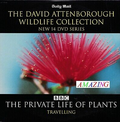 The Private Life Of Plants - Travelling - David Attenborough Collection Dvd  • 1.45£