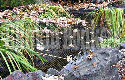 £6.29 • Buy 2m X 4m Koi Fish Pond Pool Cover Net Stop Leaves Birds Cat Cover Protector Uk