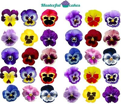 30 X Pansy Flowers Edible Rice,wafer Icing & Precut Wafer Toppers • 2.75£