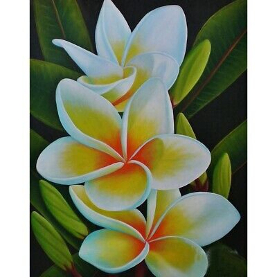 AU16.49 • Buy 5D Flower Diamond Painting Kits Full Drill Art Embroidery Decors DIY Presents