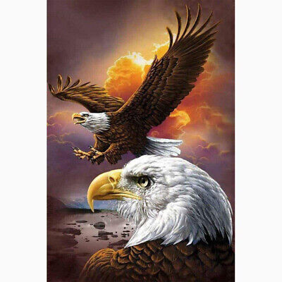 AU16.49 • Buy Eagle Animals 5D Full Drill Diamond Painting Kits Embroidery Decor DIY Gifts AU