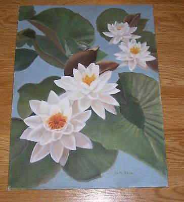 $ CDN9473.45 • Buy Nature Flowers White Lotus Lily Pads Pond Botanical Water Garden Oil Painting