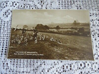 £4 • Buy Vintage Postcard Duke Of Beauforts Fox Hunting Hounds Dogs Horses R/p