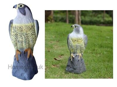 £10.95 • Buy Falcon Pest Deterrent Garden Lawn Pond Bird Cat Scarer Decoy Decorative Hawk 102