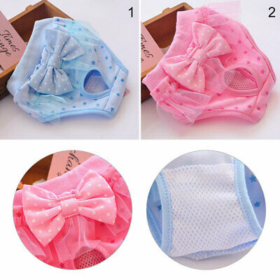 £6.22 • Buy Female Puppy Physiological Shorts Sanitary Nappy Pet Dog Underwear Diaper Pants