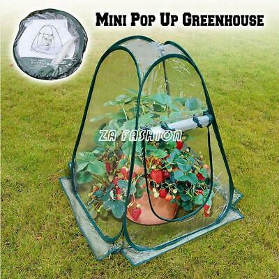 Foldable Mini Pop-Up Garden Plants Flowers Cover Tent PVC Greenhouse Cloche Tool • 16.99£