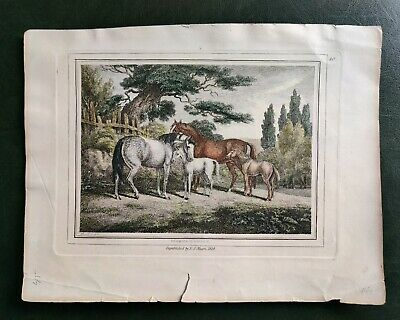 After Samuel Howitt Republished By F.J.Mason 1834  Handcoloured Print No 40 • 7.50£