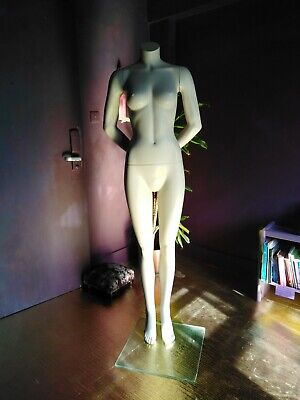 £120 • Buy Belgium Made Bonami Fashion Female Mannequin -with- Glass Stand