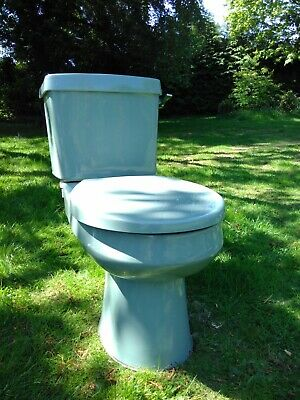 Vintage Armitage Shanks 17661 Wild Sage Bathroom Toilet And Sink With Taps Used • 95£