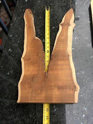 Live Edge Yew Wood Pieces Clock Or Wall Art • 24.99£