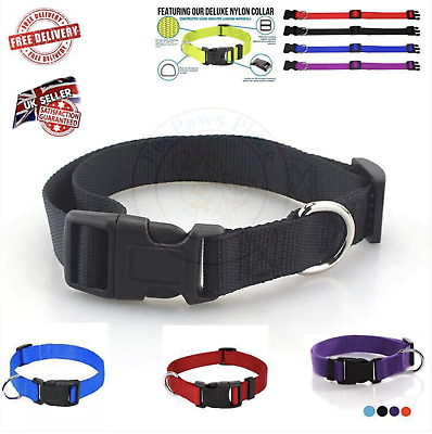 Dog Collar Puppy Adjustable Nylon Durable Collars 3 Colours 4 Sizes Uk Seller  • 3.20£