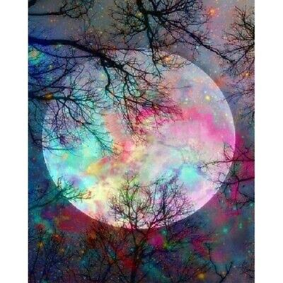 AU16.96 • Buy Full Drill 5D Diamond Painting Purple Moon Home Decor DIY Embroidery Kits Craft