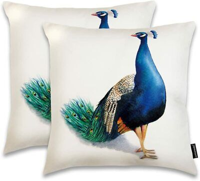 Peacock Throw Pillow Cover, 2 Pack, 18 X 18, White • 8.55£