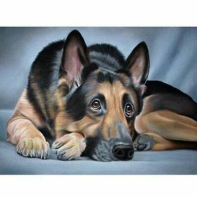 AU15.27 • Buy 5D DIY Full Drill Diamond Painting Dog  Embroidery Kits Art Decor Mural Gifts