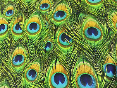 £14.19 • Buy PEACOCK FEATHERS Curtain Upholstery Cotton Fabric Material - 55'' Wide GREEN