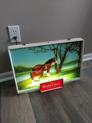 $ CDN512.61 • Buy 1950s Budweiser Beer Clydesdale Horses Back Bar Light Up Sign Anheuser Busch