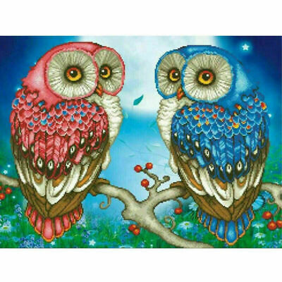 AU15.88 • Buy 5D DIY Owls Diamond Painting Full Coulorful Drill Embroidery Arts Crafts 30*40cm