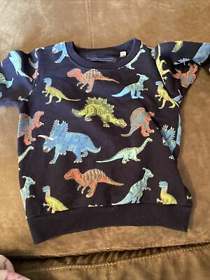 Blue Zoo Dinosaur Jumper 18-24 • 1.80£