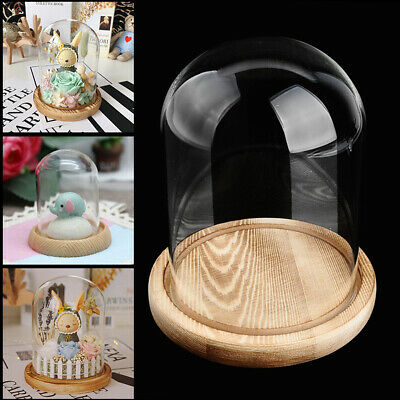 £12.99 • Buy Large Decorative Glass Dome With Wooden Base Cloche Bell Jar DIY Display Stand