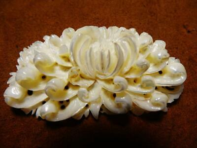 $ CDN37.48 • Buy Carved Shell Brooch /pin Lotus Flower Design Costume Jewelry