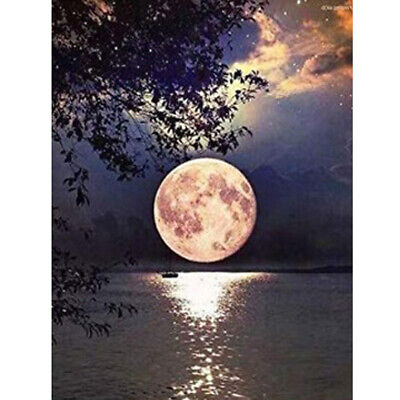 AU17.96 • Buy 5D Full Drill Diamond Painting Cross Stitch Kits Embroidery Moon Decors