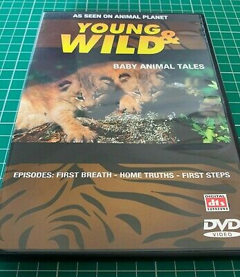 £4.74 • Buy Animal Planet Young And Wild Baby Animal Tales DVD