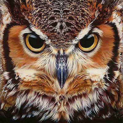AU15.96 • Buy Full 5D Drill Diamond-Painting Embroidery Owl Face Craft Art For Child