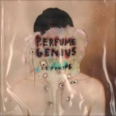 Perfume Genius - Learning Vinyl Record • 17.02£