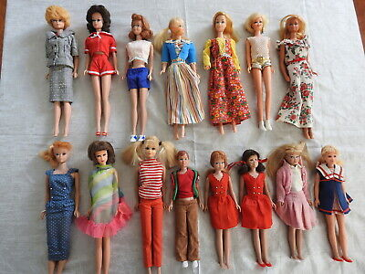 $ CDN167.50 • Buy Large Lot Of Vintage Barbie And Friends,  (lot 110)