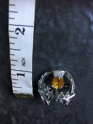 Horseshoe Thistle Brooch With Amber Colour Stone As Photographs • 7.50£